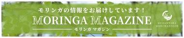 モリンガの情報をお届けしています!MORINGA MAGAZINE|モリンガマガジン